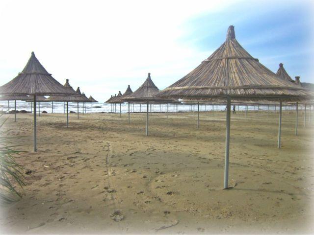 beach 2013 012