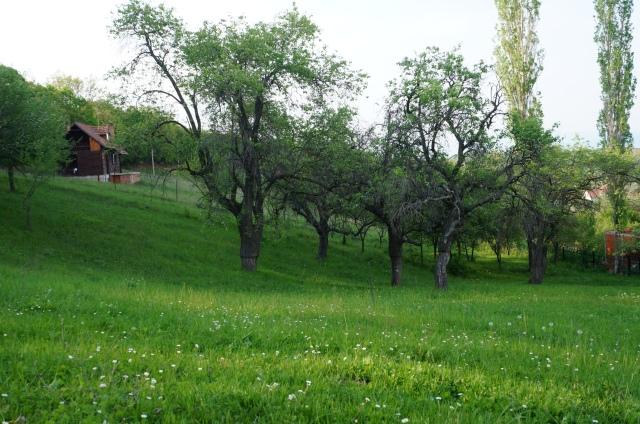 kosove maj 190